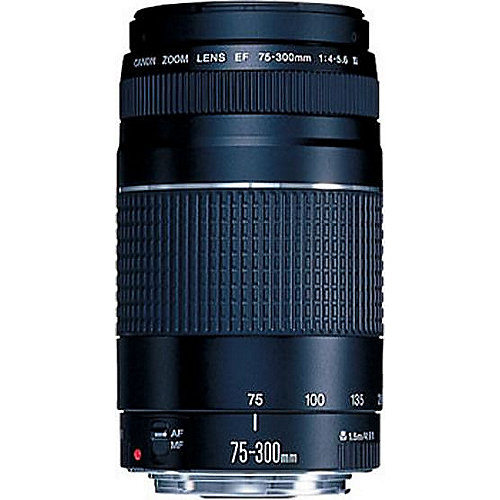 Canon EF 75-300mm f/4.0-5.6 III Tele Zoom Objektiv | 4960999214078