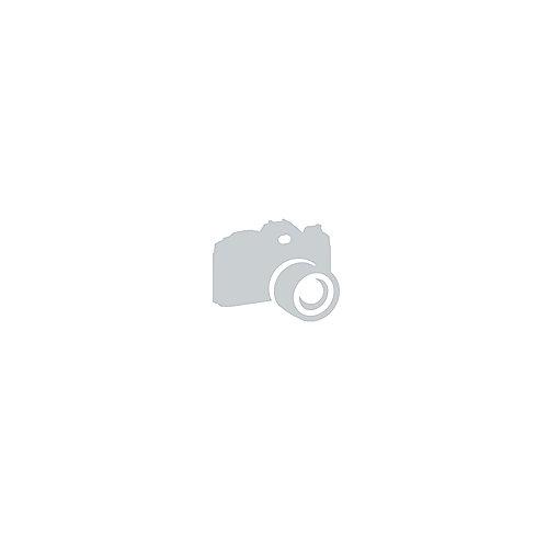 Canon 4098B001 Medienfach / Zuführung 500 Blatt | 4960999661285