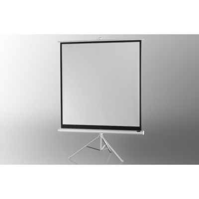 Celexon  Stativleinwand Economy 244 x 244 cm – White Edition | 4260094731808