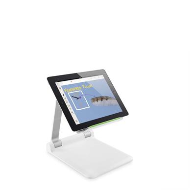 Belkin  Portabler Tablet  Stage™ | 0745883638444