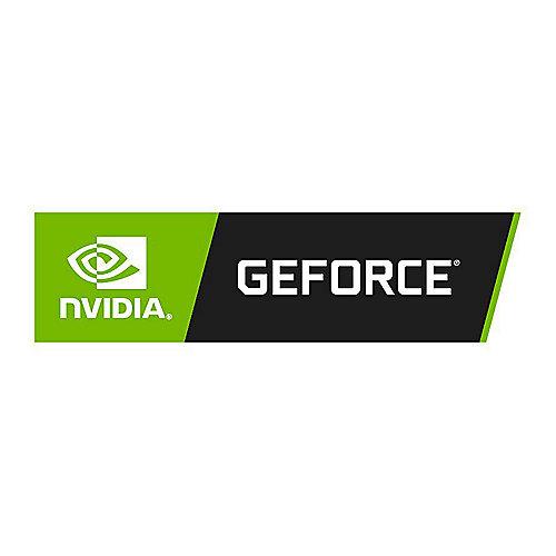 GeForce RTX 2060 StormX OC 6GB GDDR6 Grafikkarte DP/HDMI/DVI | 4710636270437